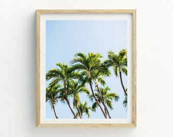 Palm Trees Print | Palm Trees Photograph | Palm Trees Wall Art | Tropical Wall Art | Tropical Print | Tropical Artwork | Tropical Picture