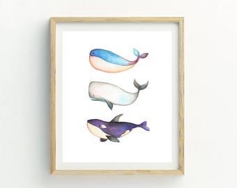 Whale Print | Bathroom Wall Art | Whale Picture | Whale Watercolor | Whale Painting | Whale watercolour | Whale Wall Art | Ocean Wall Art