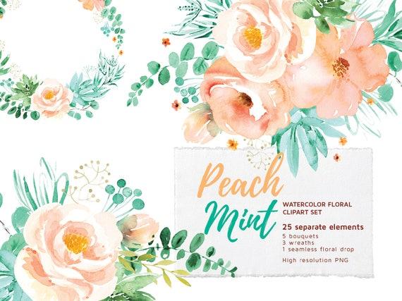 Peach mint floral clipart set watercolor flowers clip art etsy image 0 mightylinksfo