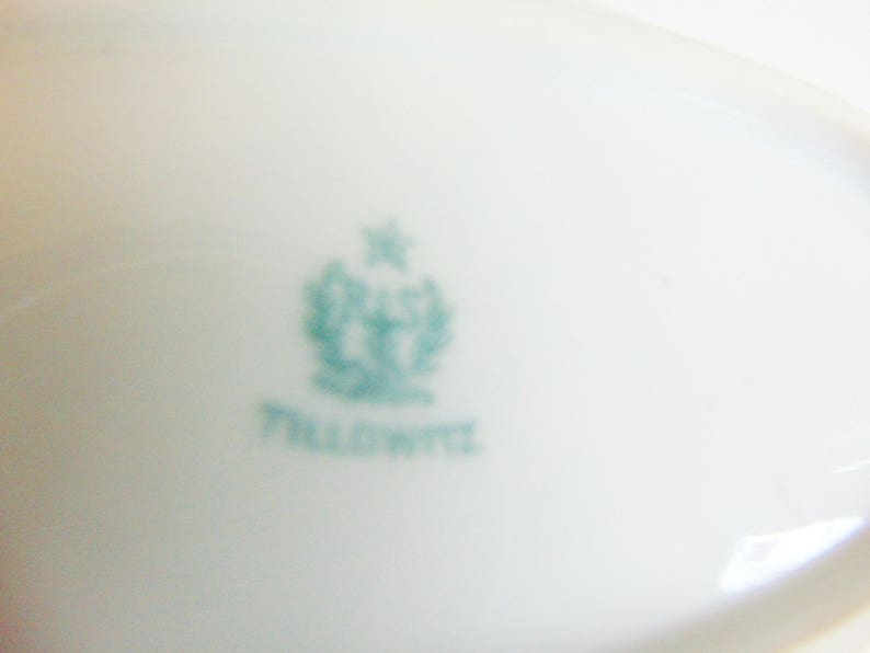 Tillowitz Museum Quality Handpainted Celery Relish Plate Early