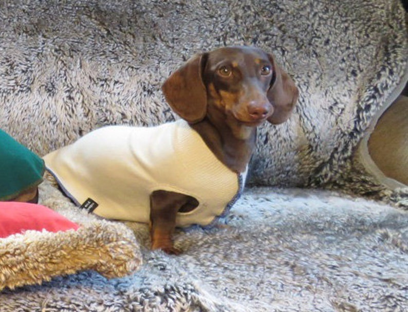 Wool Dog Coat Sweater for Italian Greyhound