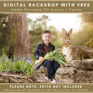 Curious Bunny Ready for an Easter Digital Backdrop