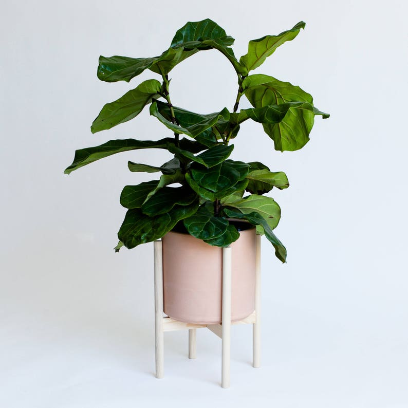White Oak Desert Modern Planter Plant Stand with 10 Ceramic Pot