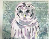 Snowy owl original mono print framed