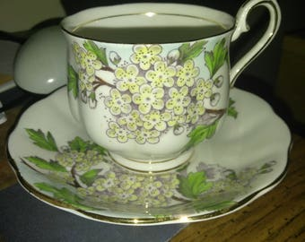 "Royal Albert ""Hawthorn"" Vintage Teacup and Saucer, Flower of the Month Series"