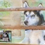 Custom Pet portrait, Custom Dog portrait, Christmas Gift, Stocking Stuffer, Custom Dog Painting, Dog portrait, Personalized Pet, Portrait