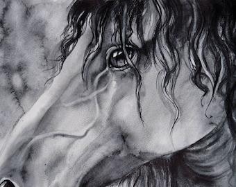 horse painting, grey art, watercolor painting, SvetnikArt