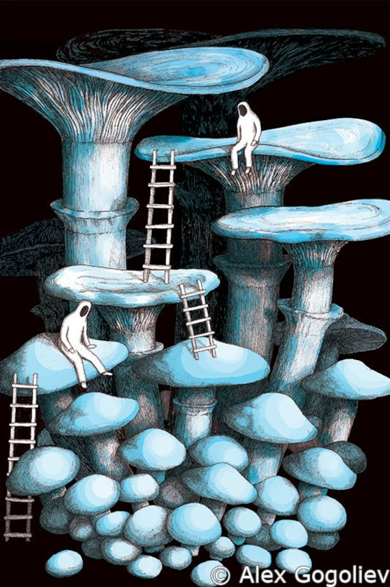 TRIPPY POSTER PSYCHEDELIC MUSHROOM HOUSE FANTASY PICTURE GIANT WALL ART PRINT