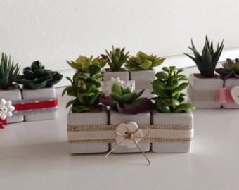 Set 3 Decorative Seedlings