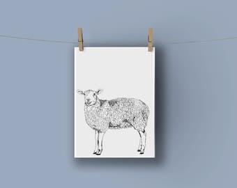 Sheep A4 Nursery Nursery Print