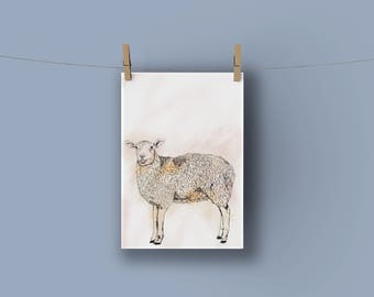 A3 Sheep Nursery Print