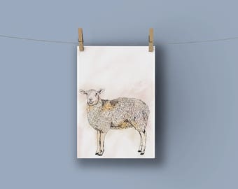 Sheep Nursery Print A4