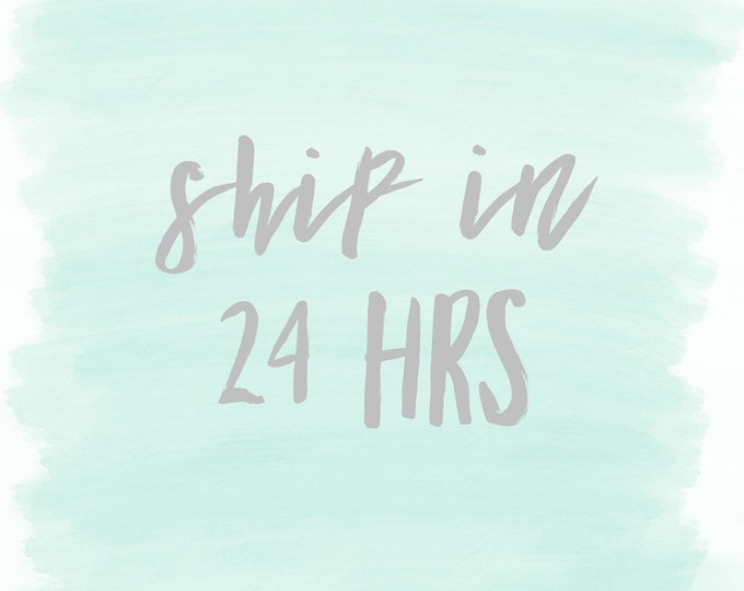 Ship in 24 hours- ADD ON