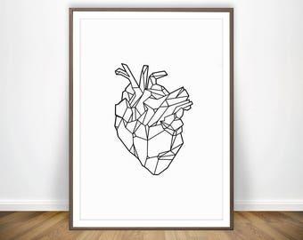 Anatomical Heart Art • Anatomy Art Human Heart Anatomy Print Medicine Anatomy Poster Medical Prints Medical Art Geometric Art Anatomical Art
