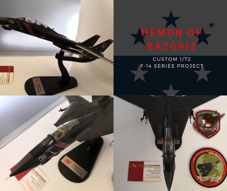 1/72 custom Diecast Grumman F-14 Tomcat 'Demon of Razgriz' version, (HM)  build