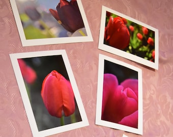 Tulip Themed Photo Cards Pack of 6