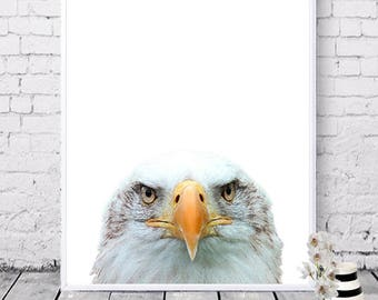 Animal prints, Eagle poster, Printable wall art, Digital prints, Instant download, Bird prints