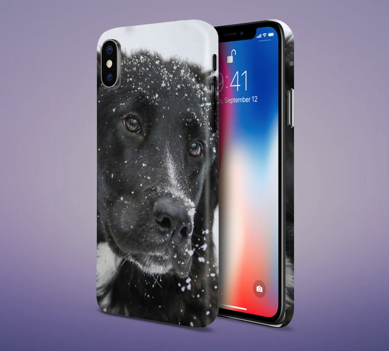 Black Lab Winter Phone Case for Apple iPhone Samsung Galaxy image 0