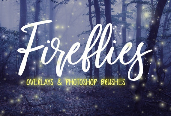 Firefly Overlays Firefly Photoshop Brushes Digital Etsy