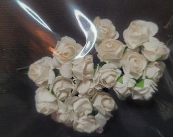 20 Ivory White Mulberry Tea Roses