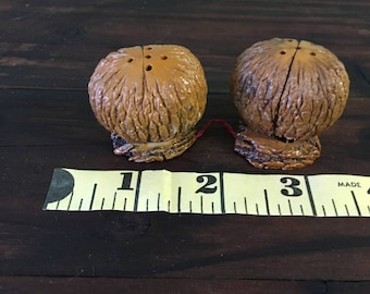 Beautiful and unique salt and pepper shakers made from Walnuts