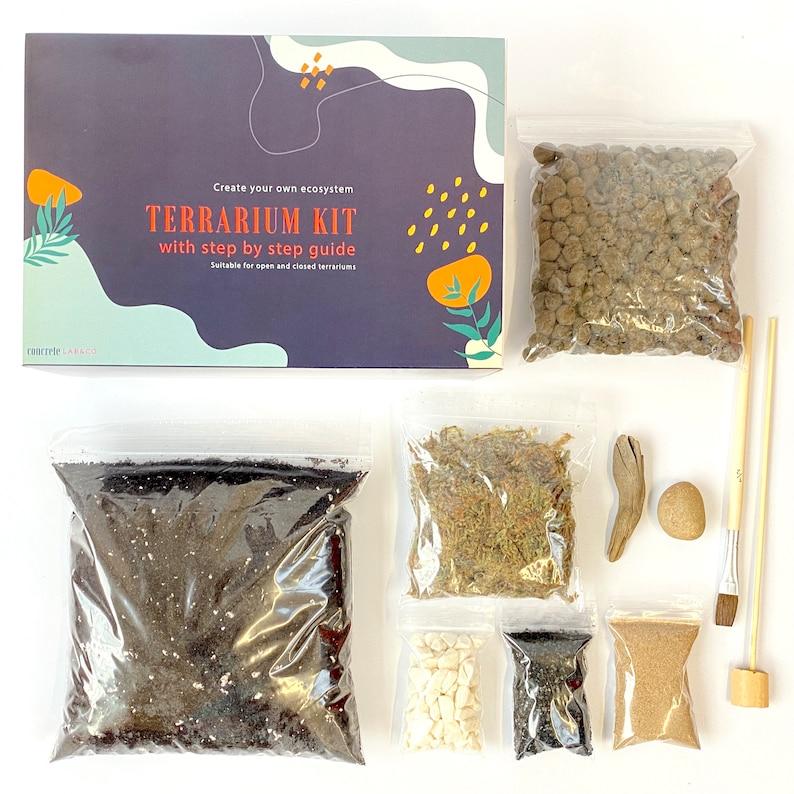 DIY Terrarium kit For Succulents Cacti Bonsai Moss Plants Step XL