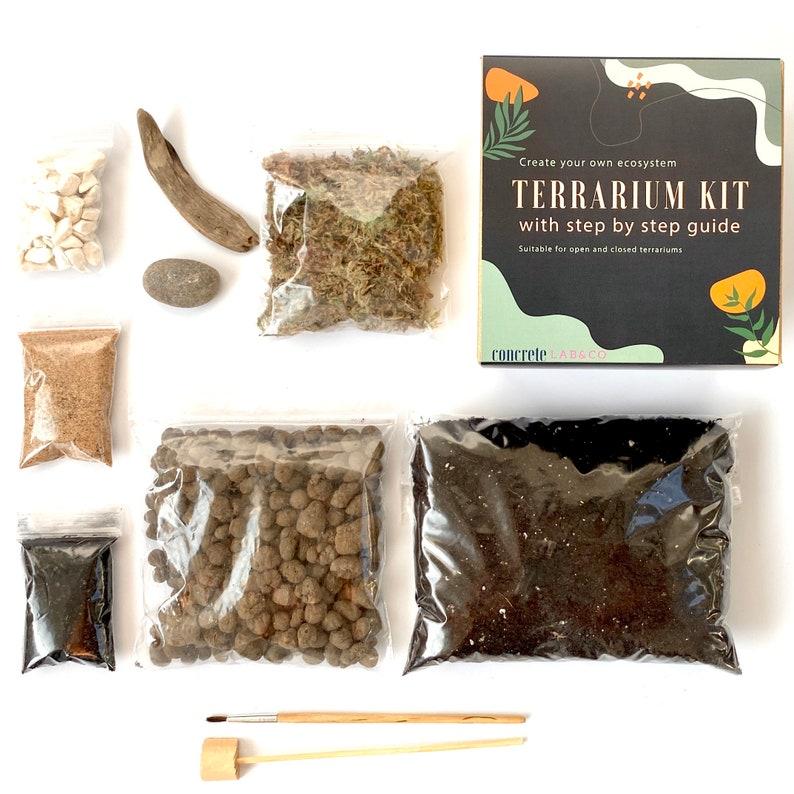 DIY Terrarium kit For Succulents Cacti Bonsai Moss Plants Step S