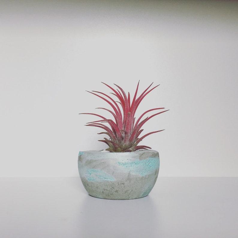 W Lights Sukkulenten Miniatur Baum Pflanzer Blumentopf für Office House