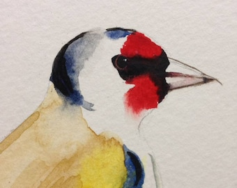 The Goldfinch in Watercolour