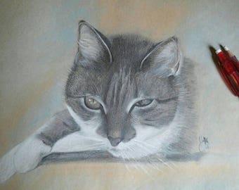 Custom pets portraits
