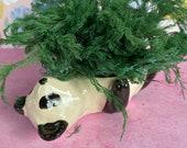 Ceramic panda planter bowl holder