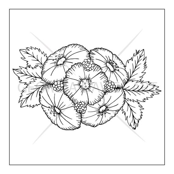 Bunch Of Cosmos Flowers Colouring Page