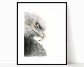 Watercolor Sepia American Bald Eagle Portrait