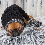 funny long hat for dogs or cats