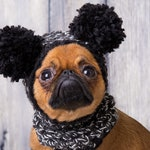 funny pompoms hat for dogs or cats