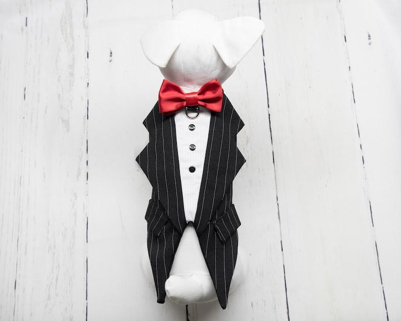 Zuko Black and white fine lines tuxedo for dog for wedding image 0