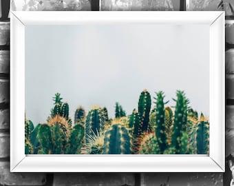 Desert Wall Art-California Print-Desert Printable-Digital Download-Desert Art Print-Cactus Printable-Nature Printable-Printable Cactus-Print