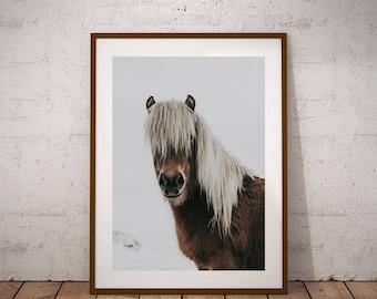 Horse Print - Wild Horse Wall Art, Digital Download, Icelandic horse Print, Horse Portrait, Pony Art Print, Scandinavian Wall Decor, Boho