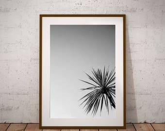 Gift For Beach Lover-Modern Coastal Decor-Palm Leaf Print-Instant Download-Beach Lover-Beach Theme Decor-Beach Bedroom Decor-Beach Poster