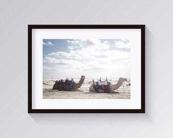 Camel Print-Digital Print-Arabic Poster-Moroccan Decor-Desert Landscape-Desert Photo-Desert Decor-Southwestern Print-California Desert
