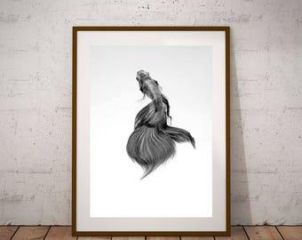 Fish Decor-Tropical Fish Print-Fish Poster-Black and White-Instant Download-Freshwater Fish-Fish gift Idea-Minimalist Print-Modern print