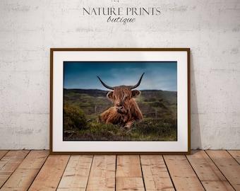 Farm print-Cow print, farmhouse decor, cow art, highland cow, cow wall art, cow decor, farm cow print, farm animal print, cow print decor