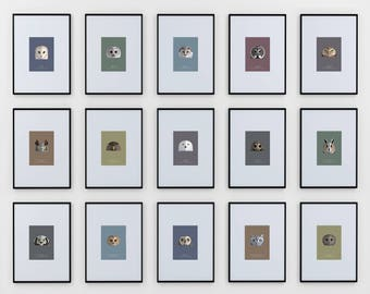 Owl Species Prints, Complete Set of Fifteen (15) - modern minimalist illustrated wall art series