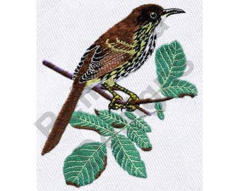 Bird - Machine Embroidery Design, Georgia Brown Thrasher