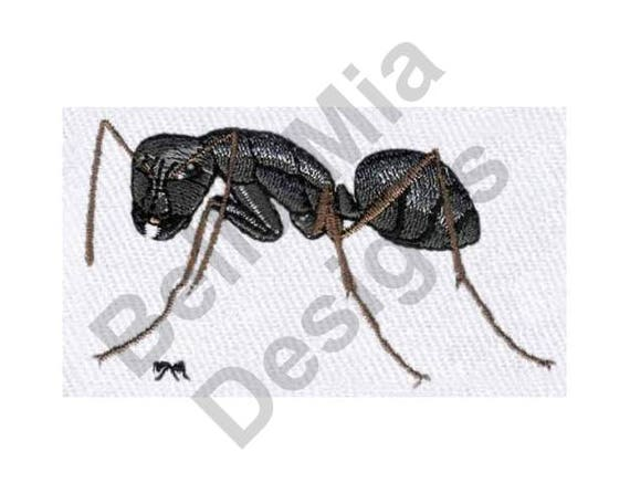 Ant Machine Embroidery Design Carpenter Ant Etsy