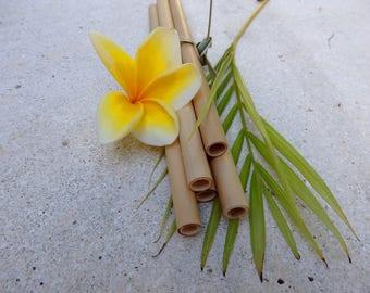 Bambus Strohhalme 5er Set Okologisch Und Wiederverwendbar Etsy