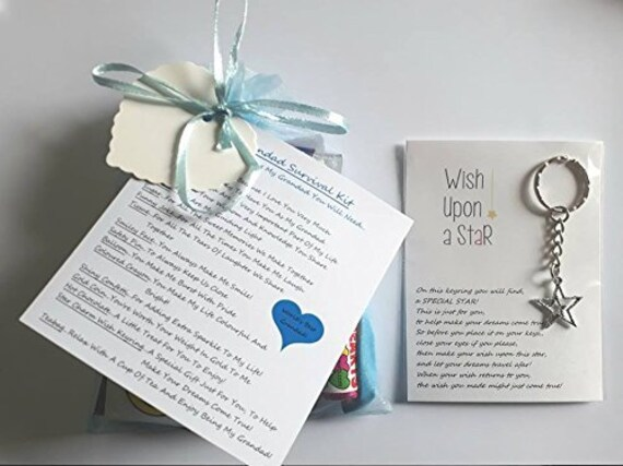 NAN VERSE LARGE BLUE CRYSTAL HEART NECKLACE  LUXURY BOX BIRTHDAY GIFT CARD TAG