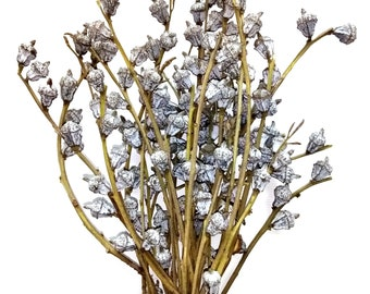 Dongli Floral Decor