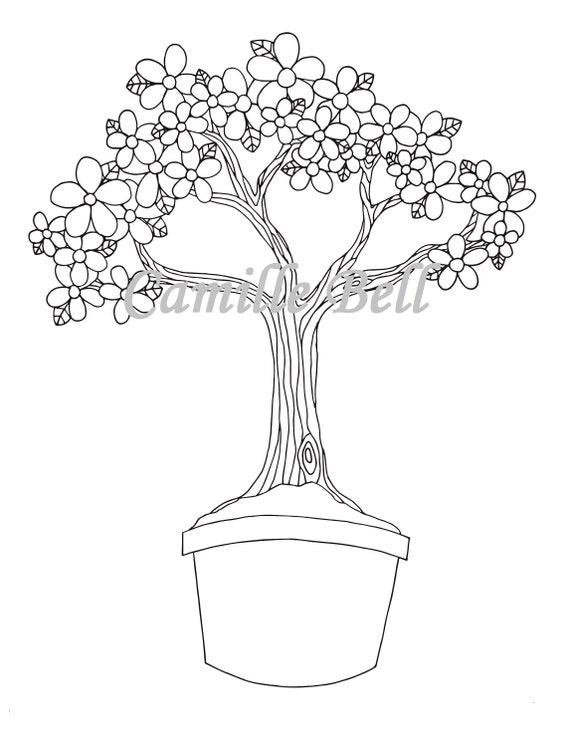 Blume Bonsai Baum Malvorlagen Erwachsene Malvorlagen Etsy