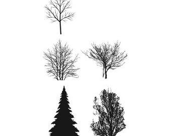 Pine Tree Tattoo Etsy